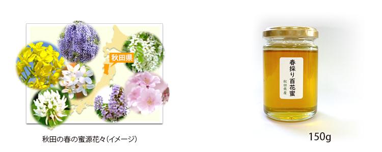 5月は秋田県産「春採り百花蜜」