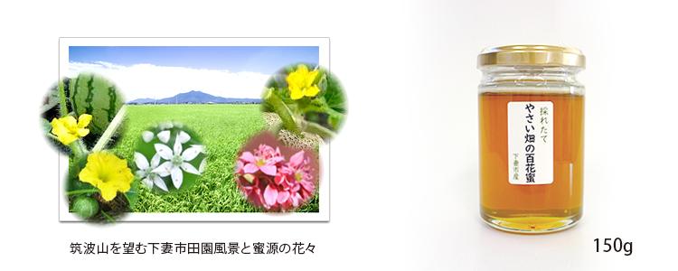 11月は茨城県下妻市産「やさい畑の百花蜜」